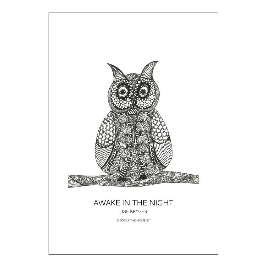Awake in the night - Lise Kryger