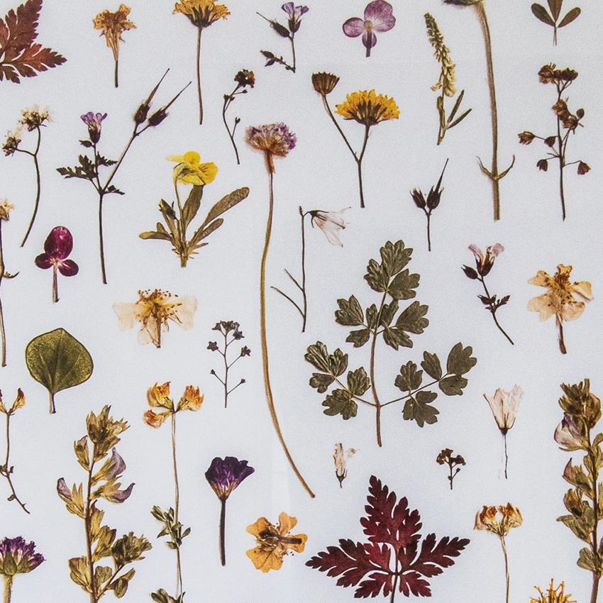 Blomstercollection udsnit / Lise Kryger Studio