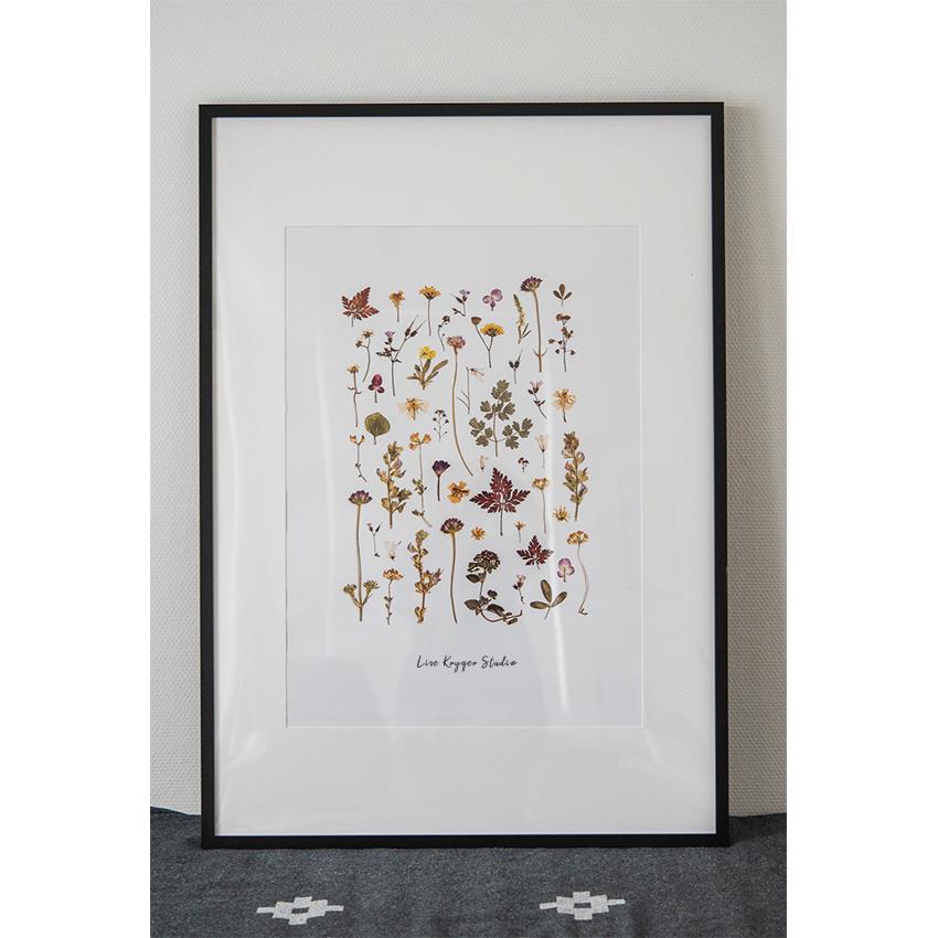 Plakat Blomstercollection 50 x 70 / Lise Kryger Studio