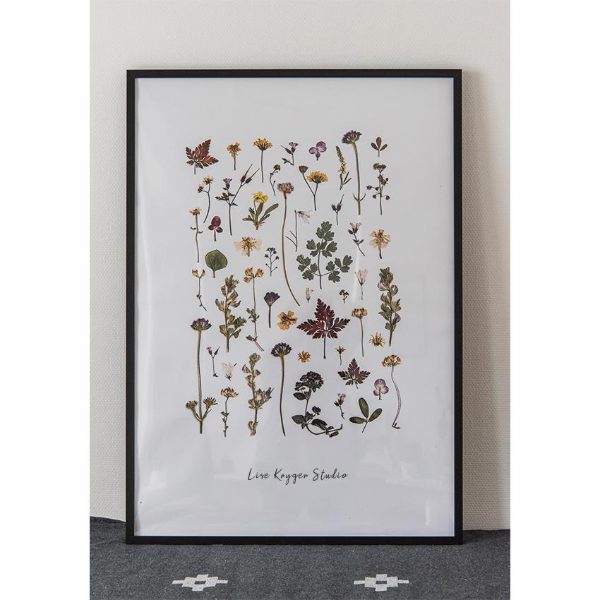 Plakat Blomstercollection 70 x 100 / Lise Kryger Studio