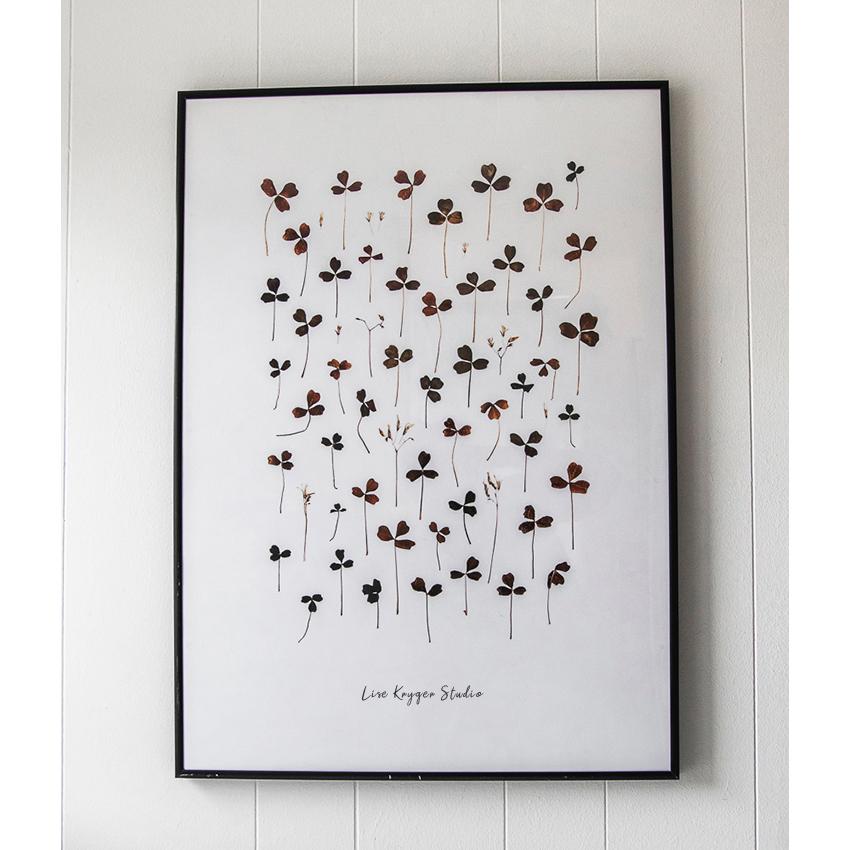 Plakat: Skovsyre / Lise Kryger Studio